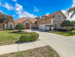Photo of 3855 Painted Bunting WAY, JACKSONVILLE, FL 32224 (MLS # 980933)