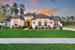 Photo of 1323 Coopers Hawk WAY, MIDDLEBURG, FL 32068 (MLS # 988221)