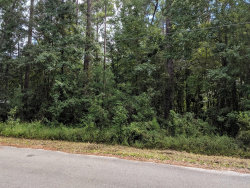 Photo of 4219 Starling RD, MIDDLEBURG, FL 32068 (MLS # 1015627)