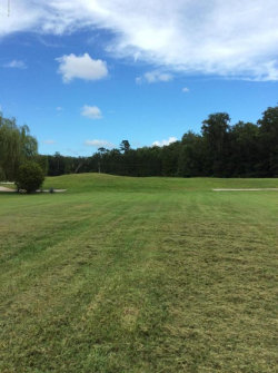 Photo of 3388 Olympic DR, GREEN COVE SPRINGS, FL 32043 (MLS # 891756)