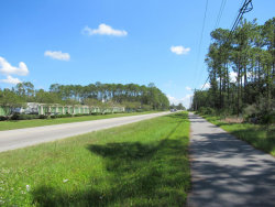 Photo of 4411 County Road 218, MIDDLEBURG, FL 32068 (MLS # 900823)