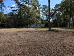 Photo of 201 Old Hard RD, FLEMING ISLAND, FL 32003 (MLS # 962603)