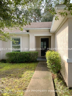 Photo of 11690 Brian Lakes DR, JACKSONVILLE, FL 32221 (MLS # 1079531)
