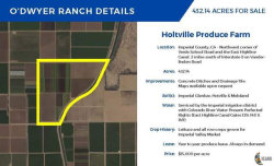 Photo of 0 East Highline 129, Holtville, CA 92250 (MLS # 20624486IC)